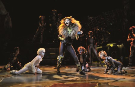 Satisfaction for audiences of the CATS Benelux Tour
